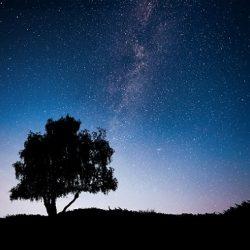 كيفية تصوير النجوم بالعدسة 18-55 بشكل احترافي !